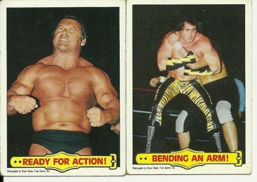 WWF Wrestling Cards Lot of 4 - 1985 - Andre the Giant, Animal, Beefcake, Putski