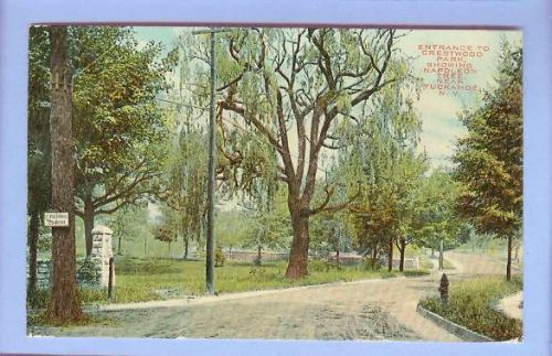 New York Tuckahoe Entrance To Greenwood Park Showing Napoleon Tree View Ro~305