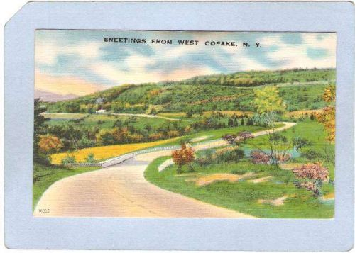 New York West Copake Greetings From West Copake ny_box3~1217