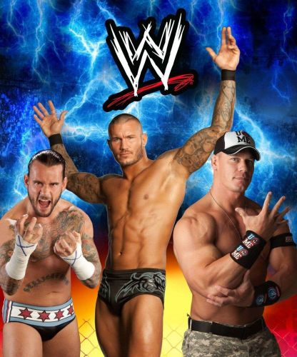Twin Boys Blue Throws WWE Soft Plush Novelty Free 2015 Wall Calendar Ship Fast