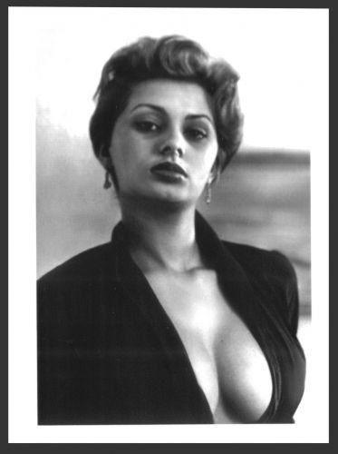 ACTRESS SOPHIA LOREN BUSTY BOSOMY CLEAVAGE POSE REPRINT PHOTO 5x7 #1