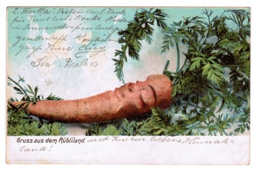 VERY RARE 1903 VEGETABLE VEGGIE CARROT PEOPLE VINTAGE POSTCARD ANTHROPOMORPHIC