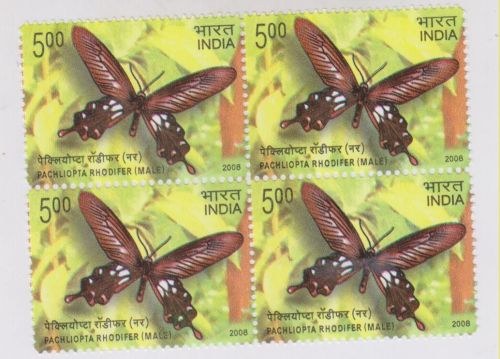 INDIA BO4 MNH STAMPS PACHLIOPTA RHODIFER MALE YEAR 2008 BUTTERFLY MINT NEVER HINGED