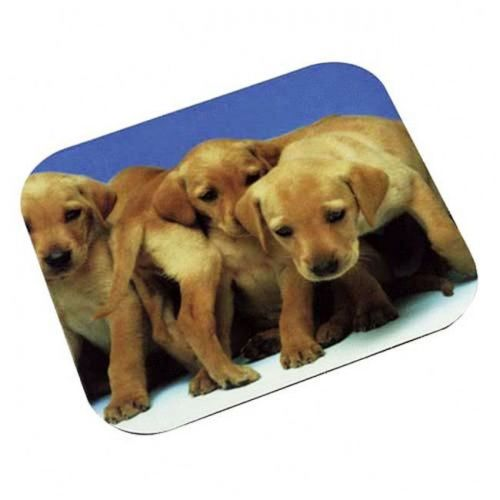 3M Labrador Puppies Optical Mouse Pad