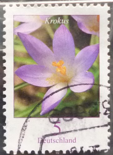 Stamp Germany 2005 Definitive Issue - Flowers Crocus 0.05 Euro