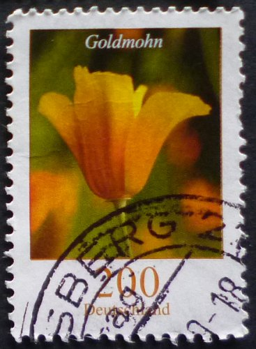 Stamp Germany 2006 Flowers - California Poppy Eschscholzia californica 2.00 Euro