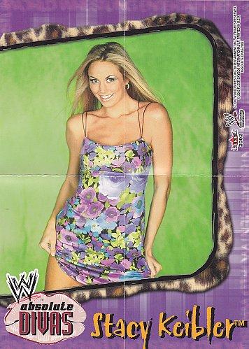 Stacy Keibler - WWE Absolute Divas 2002 Wrestling Mini Poster