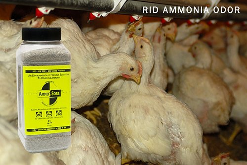 AMMOSORB Natural Ammonia Odor Elimination Deodorizer Granules: 2 lb.