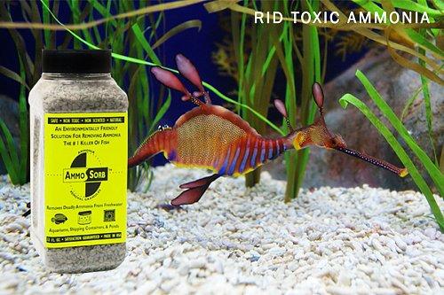 AMMOSORB Natural Aquarium Ammonia Removal Deco Rocks: 50 lb.