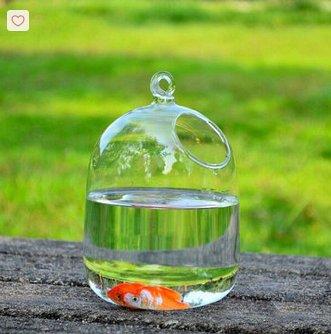 bottle glass wall vase,glass terrarium skull