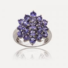 Sterling Silver 2.5ct TGW Tanzanite Flower Ring