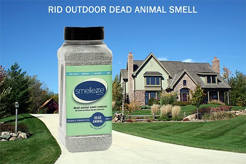 SMELLEZE Dead Animal Deodorizer Powder-2 lb: Rid Dead Rat & Mice Smell