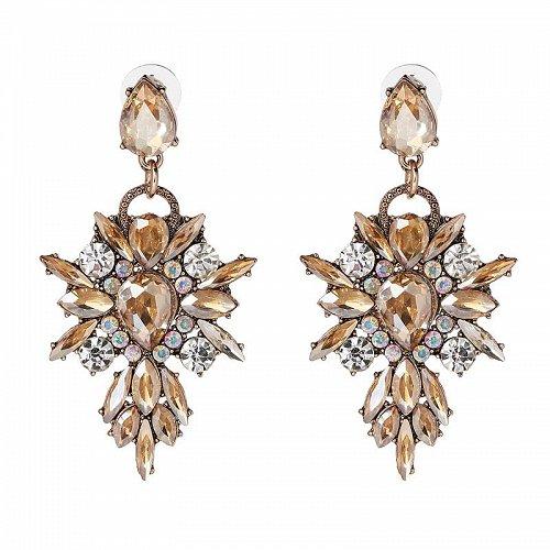 women fashion elegant earrings