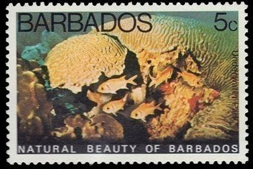BARBADOS 1V MNH STAMP 1977 Underwater Park Corals and Sponges Fishes