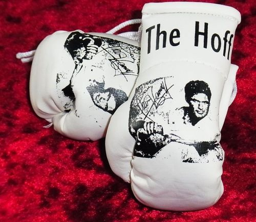 "David Hasselhoff ""The Hoff"" Mini Boxing Gloves (ideal for your rear view mirror)"