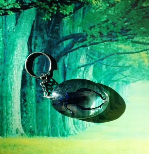 KEYCHAIN INSECT METALLIC WOOD-BORING BEETLE REAL KEYRING INSECT IN THAILAND 074