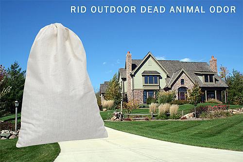 SMELLEZE Reusable Dead Animal Smell Eliminator Deodorizer: Rids Rotting Odor