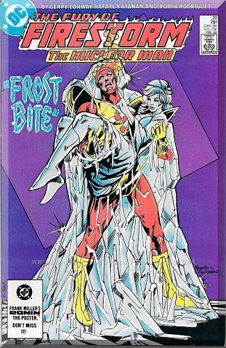 The Fury Of Firestorm #20 (1984) *Copper Age / DC Comics / Killer Frost*