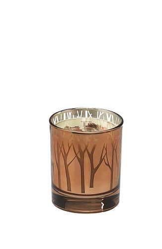 :10752U - Woodland Trees Maple Butter Scented Votive Candle Glass Cup