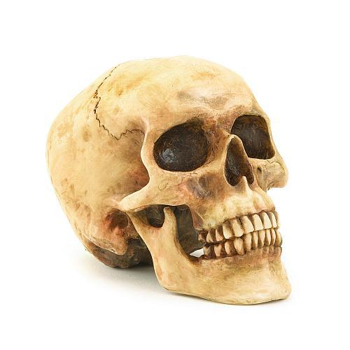 36245U - Grinning Skull Head Figurine
