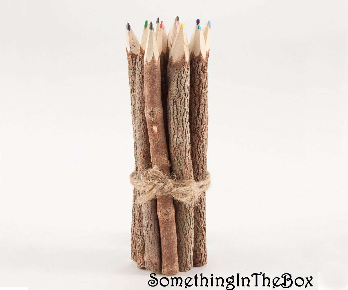 Rustic Whittled Wood Colored Pencils Set of 7 Branch Twig
